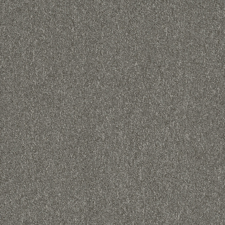 Engineered Floors Pentz Diversified 20 3036B Commercial Carpet