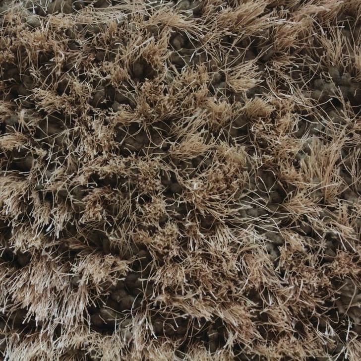 Stanton Avantgarde Shaggy Stratus Polyester Fiber Residential Carpet