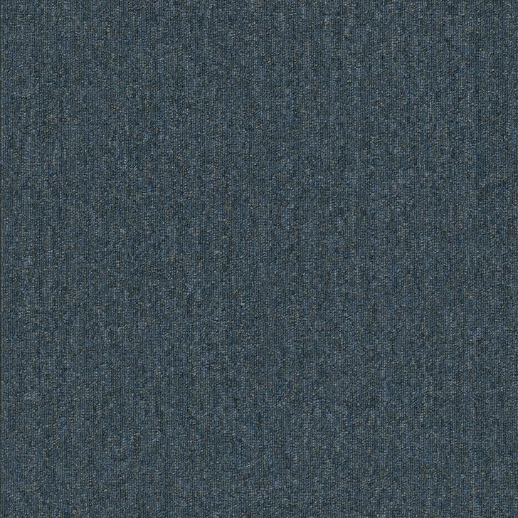 Engineered Floors Pentz Uplink 20 Broadloom 3058B Commercial Carpet