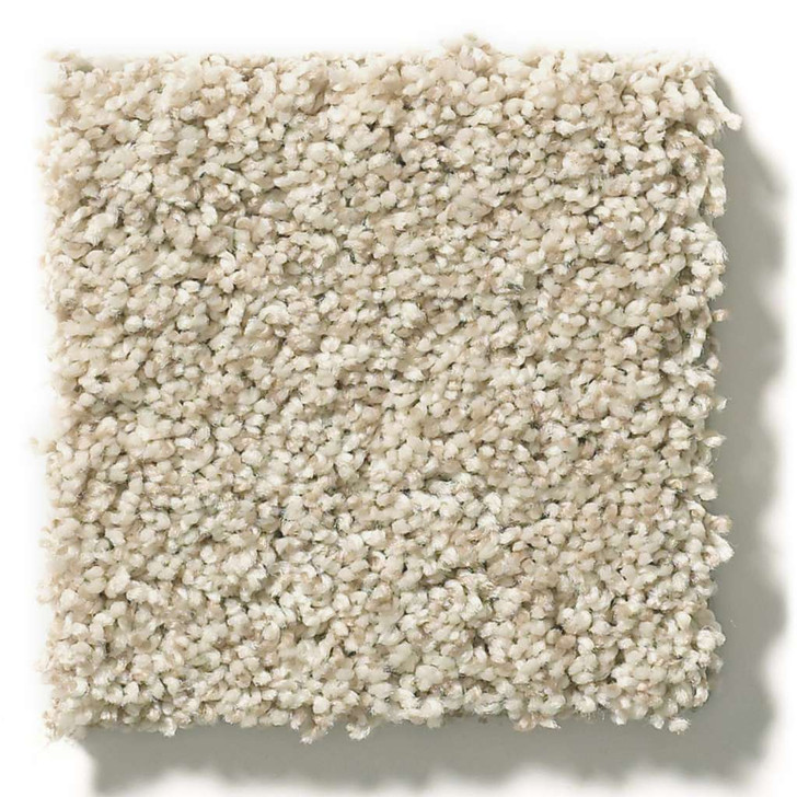 Shaw Simply the Best Values It's All Right E9966 Residential Carpet