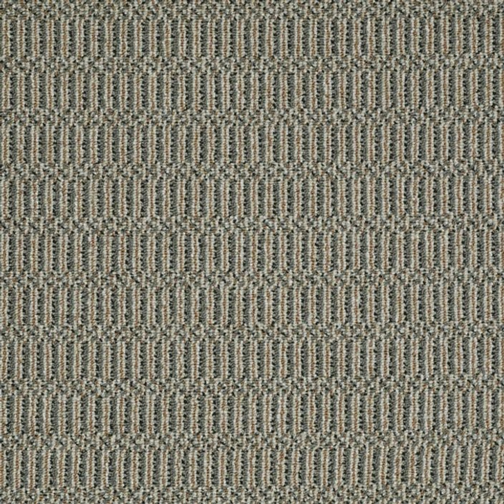 Shaw Philadelphia Sourcebook III On Site 54802 Commercial Carpet