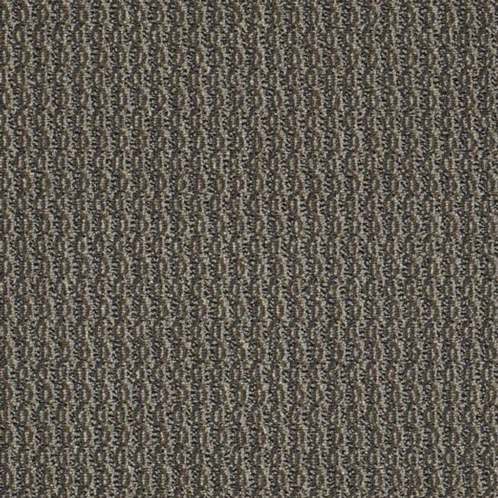 Shaw Philadelphia Sourcebook III On Target 54803 Commercial Carpet
