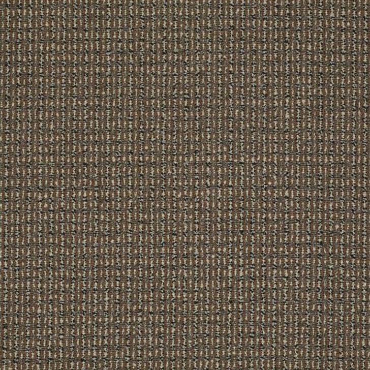 Shaw Philadelphia Sourcebook III On the Move 54801 Commercial Carpet