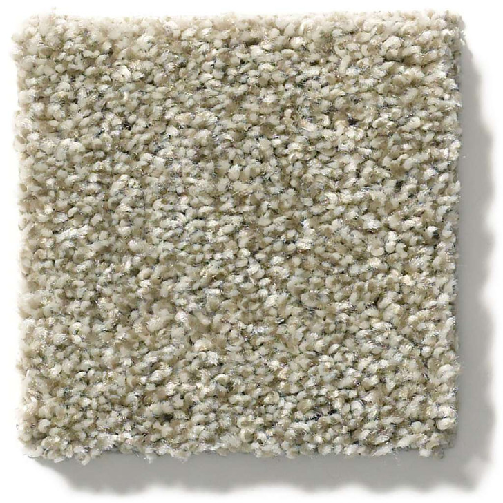 Shaw Simply the Best Values Cabana Life (T) E9958 Residential Carpet