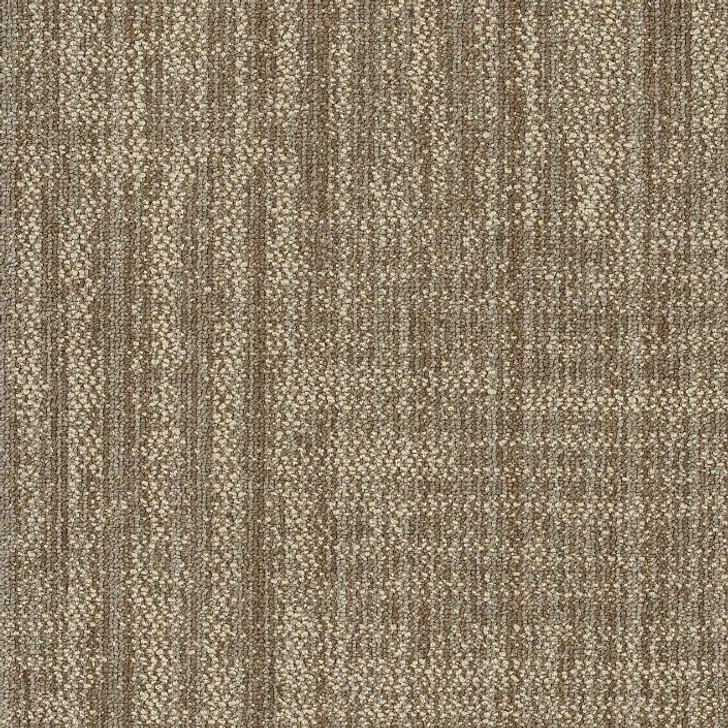 Shaw Philadelphia Beyond Basic Raw Beauty 54843 Commercial Carpet