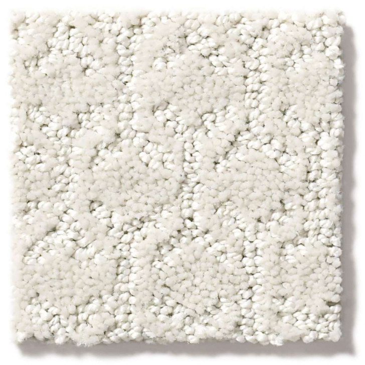 Shaw Simply the Best Values Valid 5E323 Residential Carpet