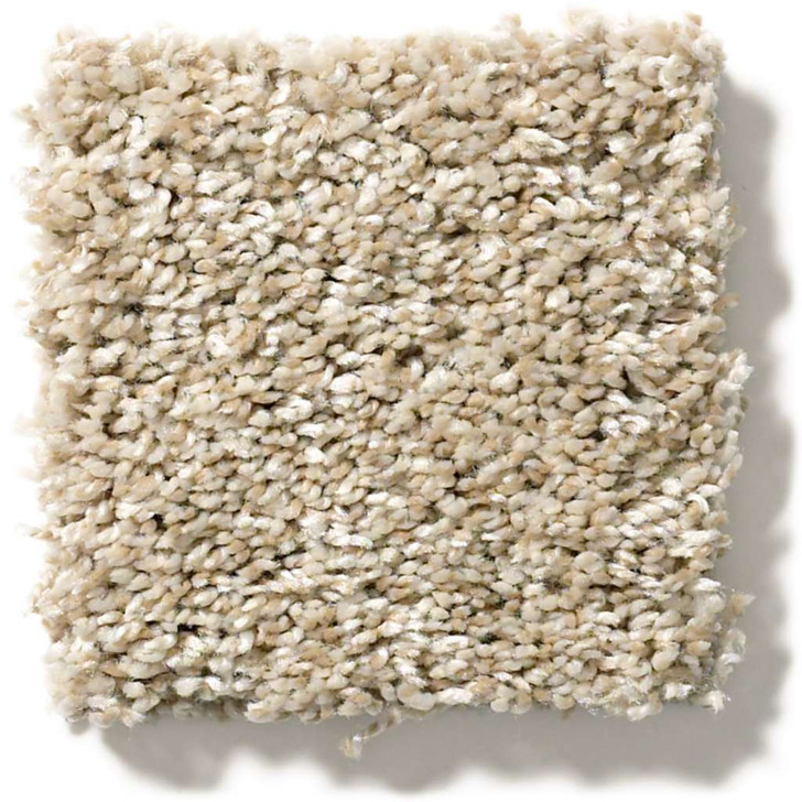 Shaw Simply the Best All About It 5E038 Residential Carpet