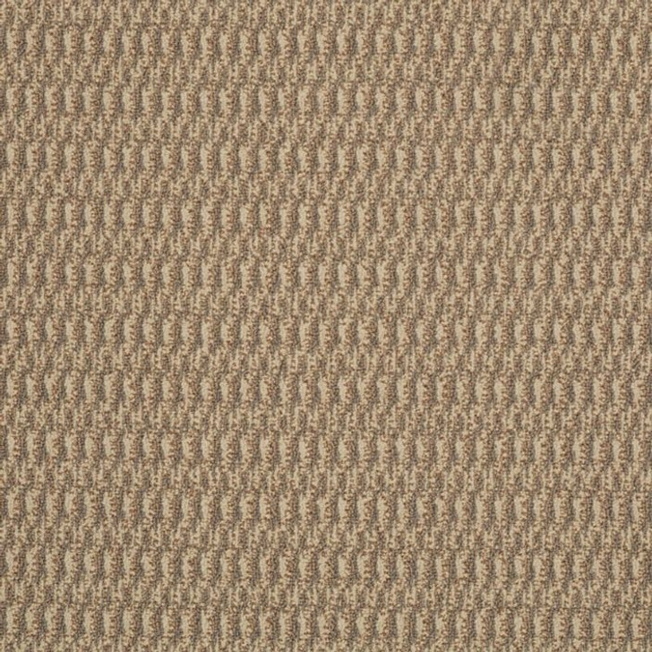 Shaw Philadelphia Tandem In Harmony 54578 Commercial Carpet