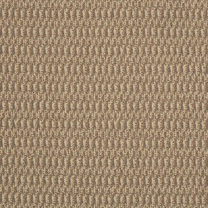 Shaw Philadelphia Tandem In Harmony 54578 Commercial Carpet