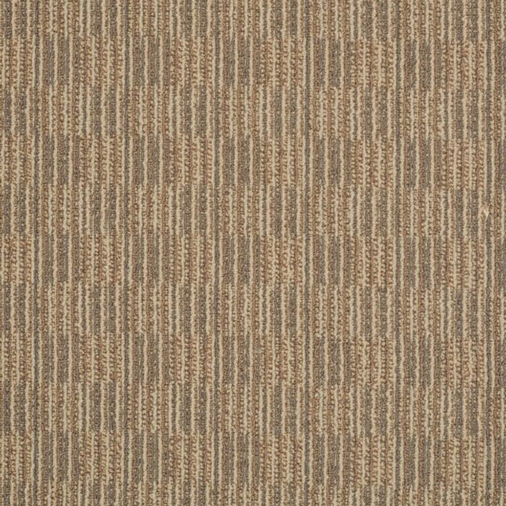 Shaw Philadelphia Tandem Unison 54579 Commercial Carpet