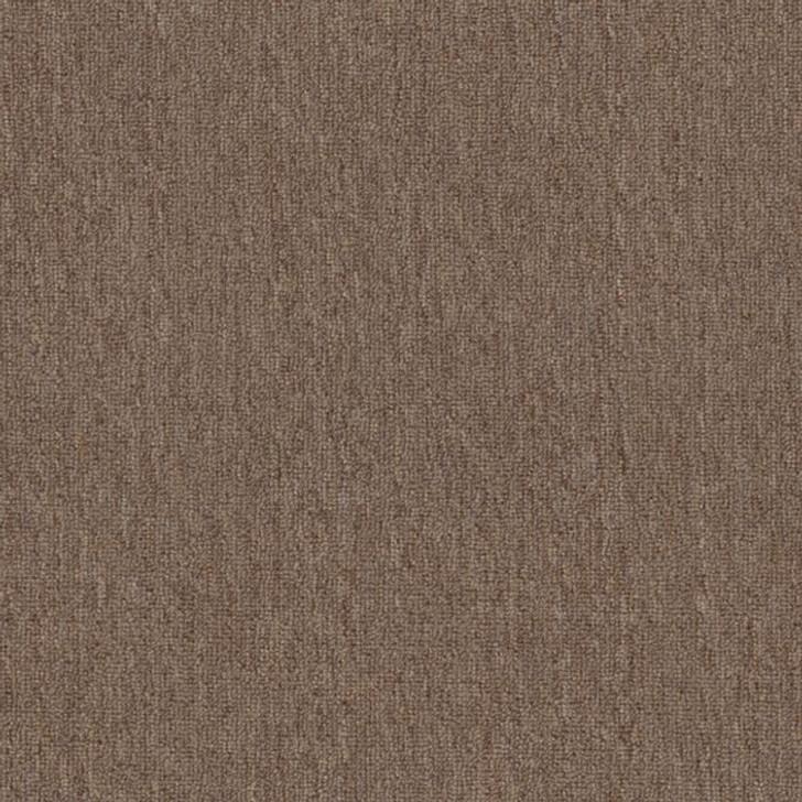 Shaw Philadelphia Net Terms Big Bang! 54585 Commercial Carpet