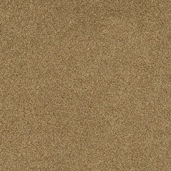 Shaw Philadelphia Snapshot Calm 54738 Commercial Carpet