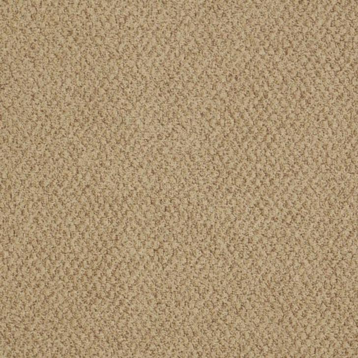 Shaw Philadelphia Snapshot Gather 54740 Commercial Carpet