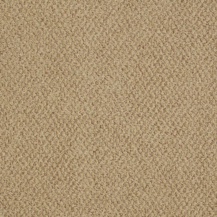 Shaw Philadelphia Snapshot Gather 54740 Commercial Carpet