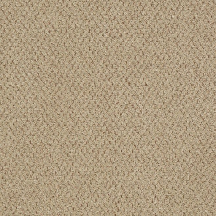 Shaw Philadelphia Snapshot Gather EPBL 54741 Commercial Carpet