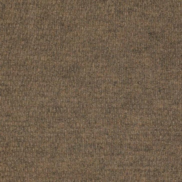 Shaw Philadelphia Bedecked 54689 Indoor/Outdoor Carpet