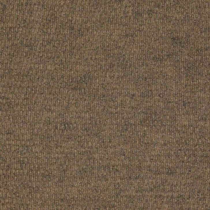 Shaw Philadelphia Bedecked 54689 Indoor/Outdoor Carpet