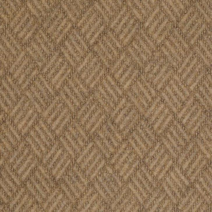 Shaw Philadelphia Dreamweaver 54690 Indoor/Outdoor Carpet