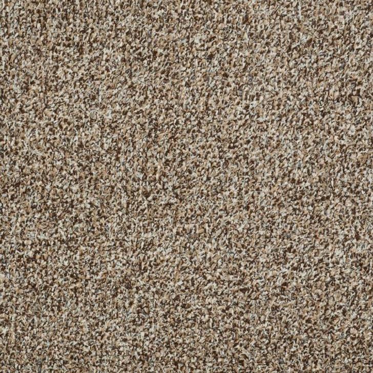 Shaw Philadelphia Arbor View T 54625 Indoor Outdoor Turf Carpet