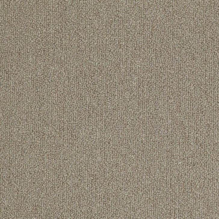 Shaw Philadelphia Outside Agenda 54638 Indoor Outdoor Turf Carpet
