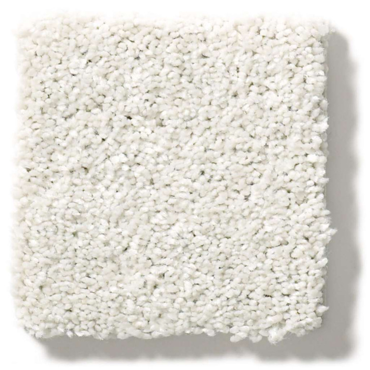 Shaw Simply the Best Values After All II 5E045 Residential Carpet