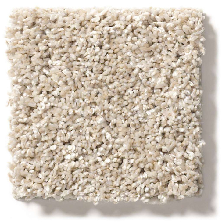Shaw Simply the Best Values After It II 5E258 Residential Carpet