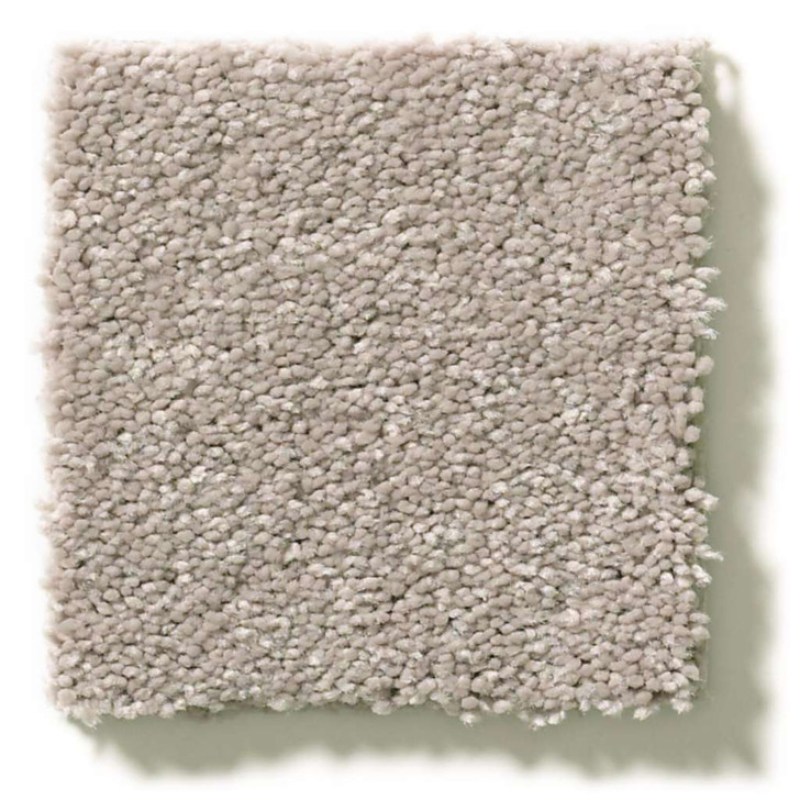 Shaw Simply the Best Momentum II E9968 Residential Carpet