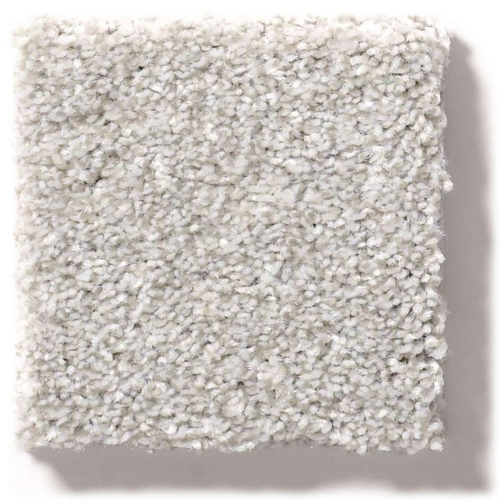 Shaw Simply the Best Make It Mine II 5E256 Residential Carpet