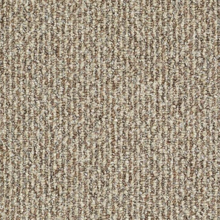 Shaw Philadelphia Natural Path 54636 Indoor Outdoor Turf Carpet