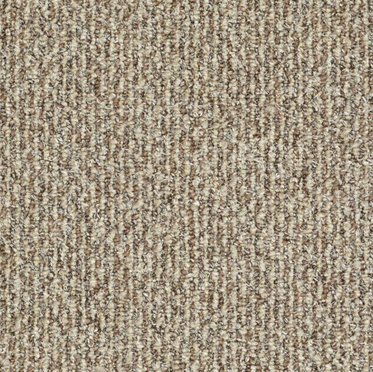 Shaw Philadelphia Natural Path 54636 Indoor Outdoor Turf Carpet