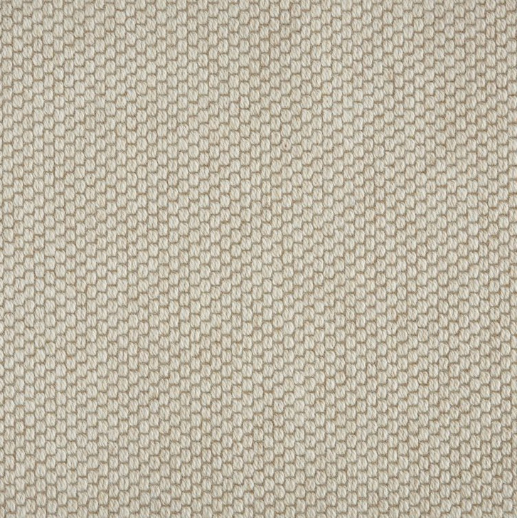 Stanton Elements Cabo II Polypropylene Blend Residential Carpet