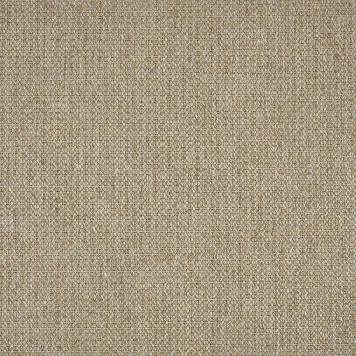 Stanton Elements Ribcord II Polypropylene Blend Residential Carpet