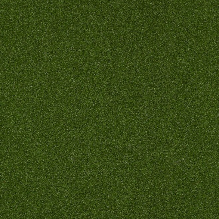 Shaw Philadelphia Park Central 54635 Indoor Outdoor Turf Carpet