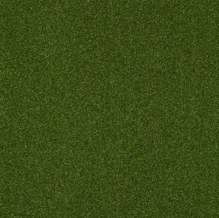 Shaw Philadelphia Intensify Unitary 54716 Indoor Outdoor Turf Carpet