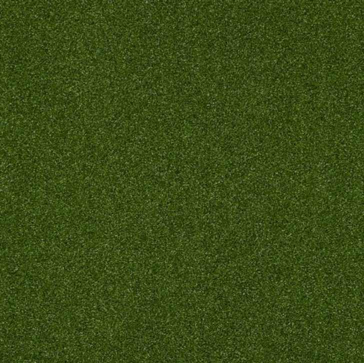 Shaw Philadelphia Intensify Unitary 54716 Indoor Outdoor Turf Carpet