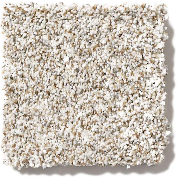 Shaw Caress Devon Classic I CCS93 Residential Carpet