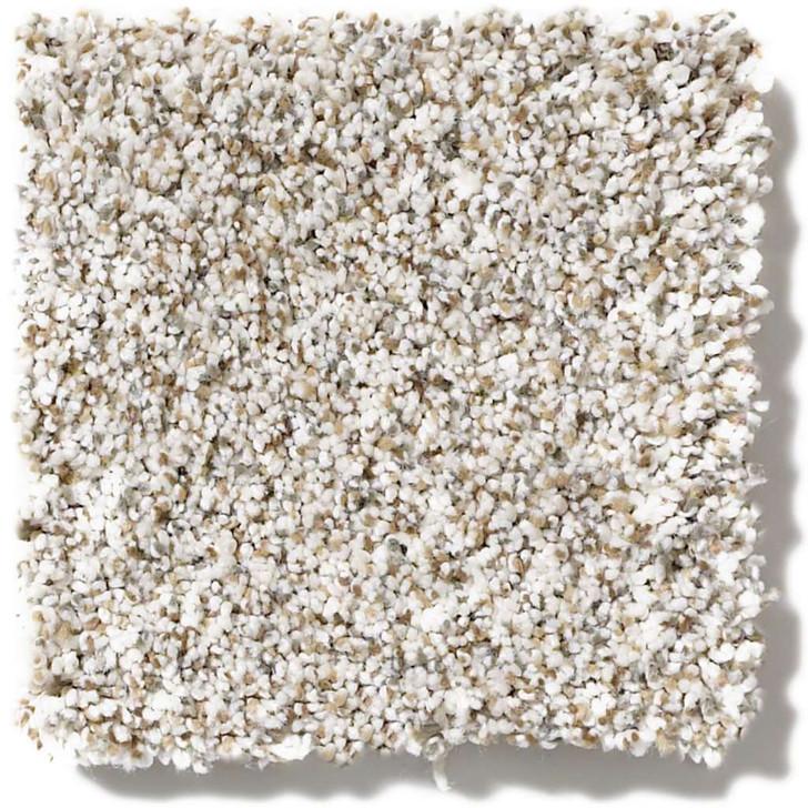 Shaw Caress Devon Classic II CCS94 Residential Carpet