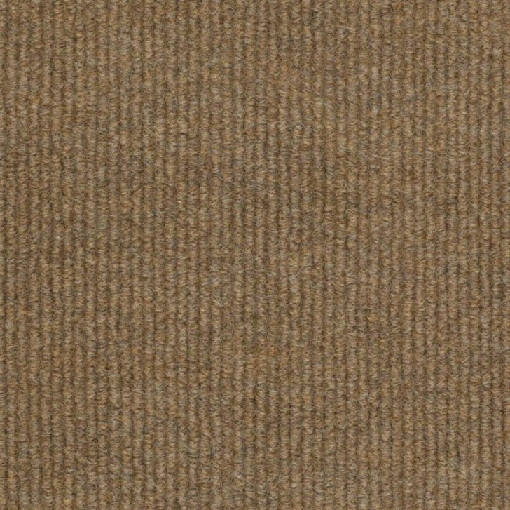 Shaw Philadelphia Summer Stock 54691 Indoor Outdoor Turf Carpet
