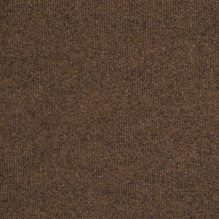 Shaw Philadelphia Windsurf 54688 Indoor Outdoor Turf Carpet
