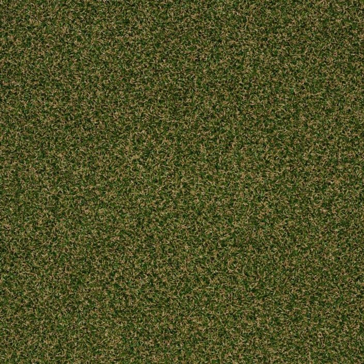 Shaw Philadelphia Launch 54743 Indoor Outdoor Turf Carpet