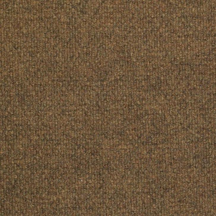 Shaw Philadelphia SuccessionII TL 54695 Indoor Outdoor Turf Carpet