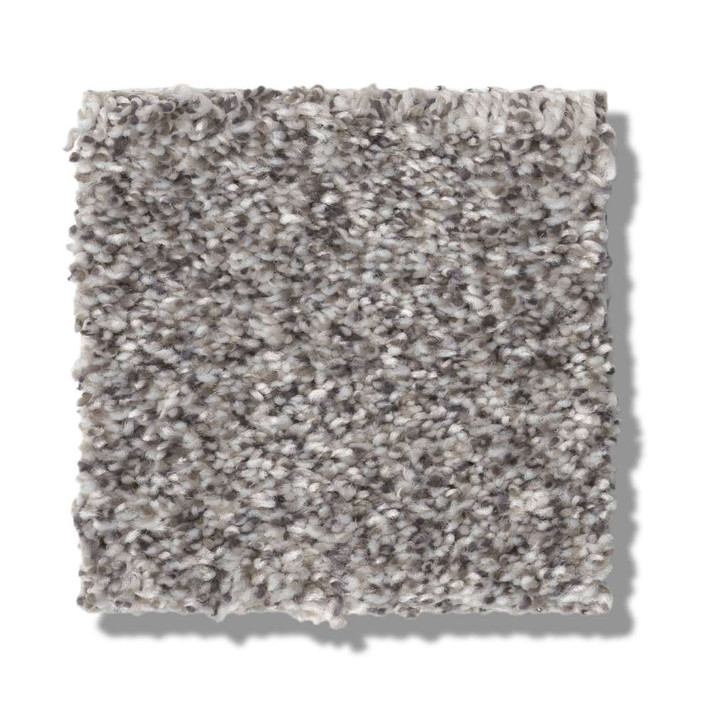 Shaw Simply the Best Values Within Reach II 5E260 Residential Carpet