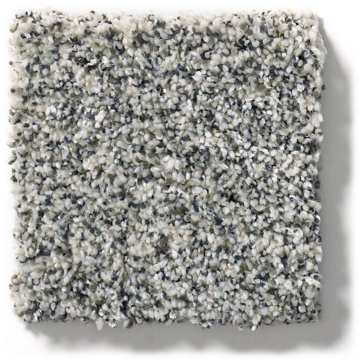 Shaw Simply the Best Within Reach III 5E261 Residential Carpet