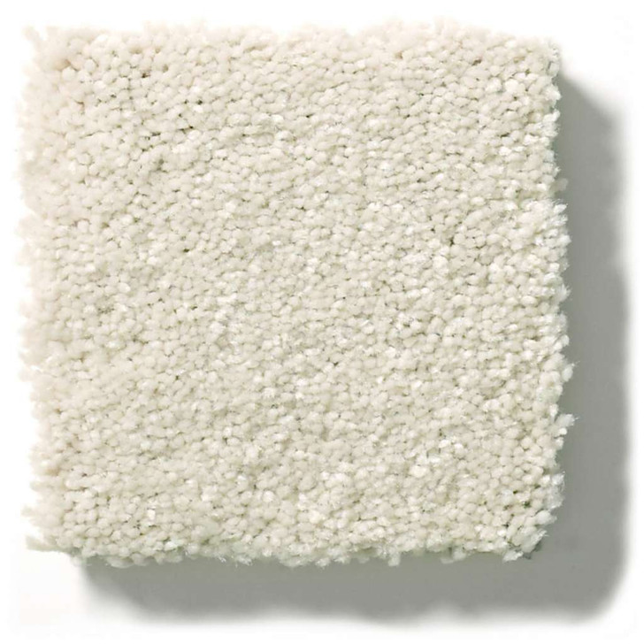 Shaw Simply the Best Solidify I 15' 5E263 Residential Carpet