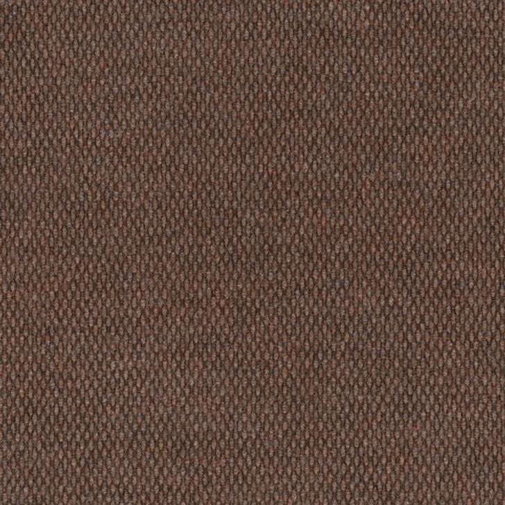 Shaw Philadelphia Commons II 54693 Indoor Outdoor Turf Carpet