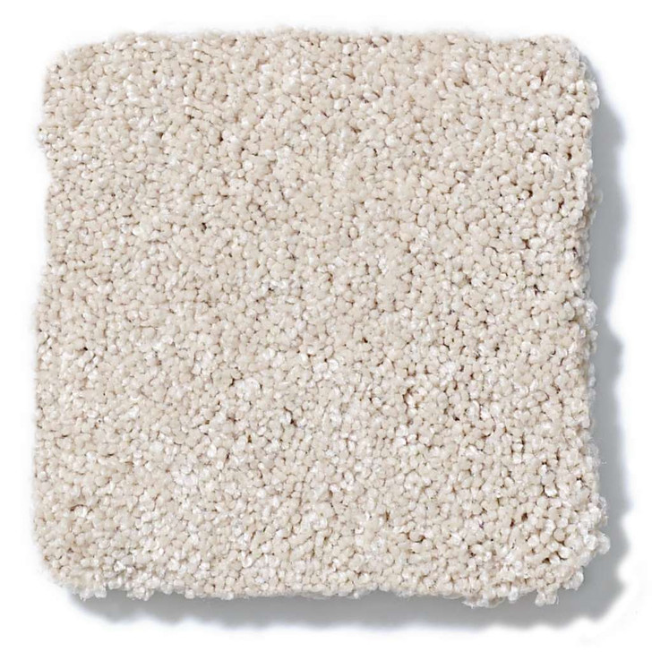 Shaw Foundations Take the Floor Texture II 5E006 Residential Carpet