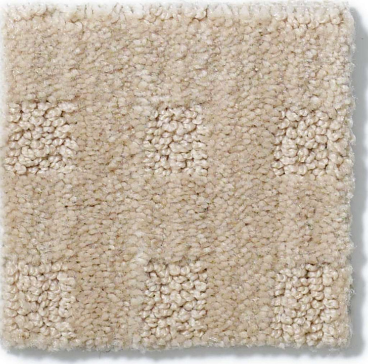 Shaw Cove Island 875DR Residential Carpet
