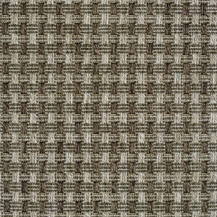 Stanton Four Seasons Timbuktu Polypropylene Indoor/Outdoor Carpet