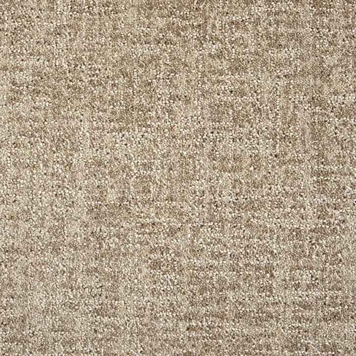 Stanton Fusion Integration Polypropylene Fiber Residential Carpet