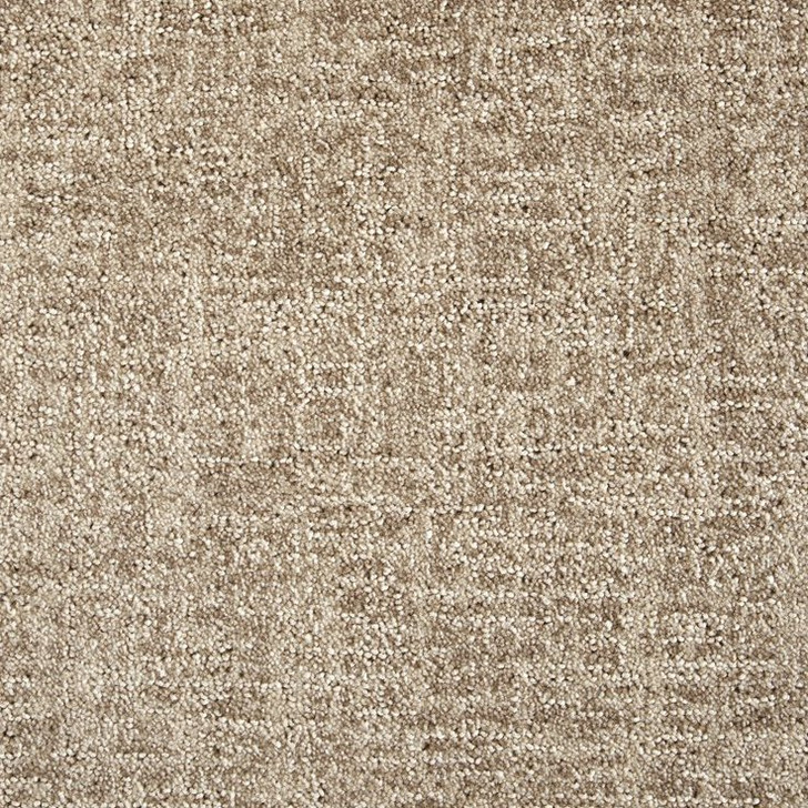 Stanton Fusion Integration Polypropylene Fiber Residential Carpet